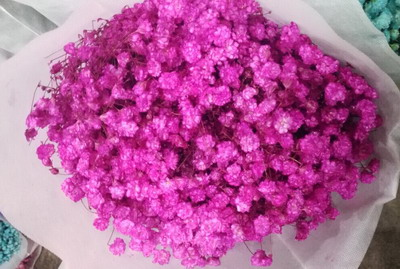 Baby's Breath Flower(Gypsophila)-02