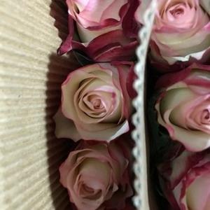 Fresh Cut Flower Rose -Red LipStick