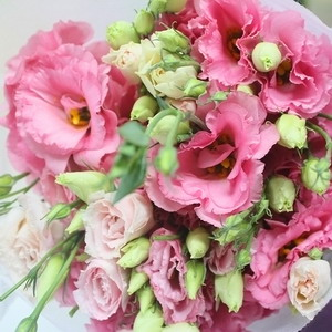 Fresh Cut Flower-Eustoma Flower-03