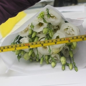 Fresh Cut Flower-Eustoma Flower-05