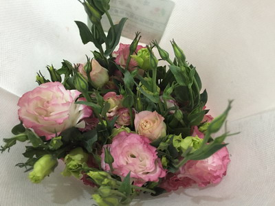 Fresh Cut Flower-Eustoma Flower-07