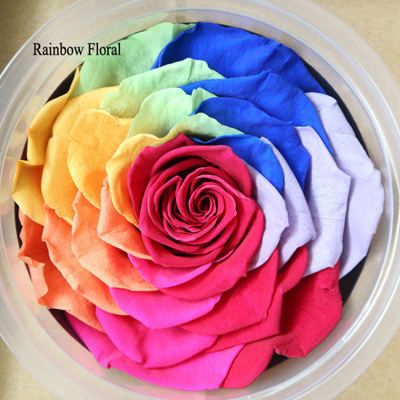 9-10CM Big Size preserved Rose head(1pcs-box)-19