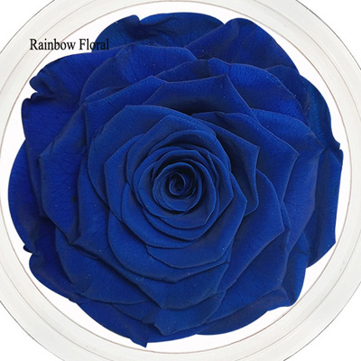 9-10CM Big Size preserved Rose head(1pcs-box)-14