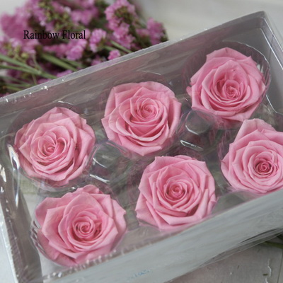 5-6CM (6pcs-box) Solid color preserved rose head-17
