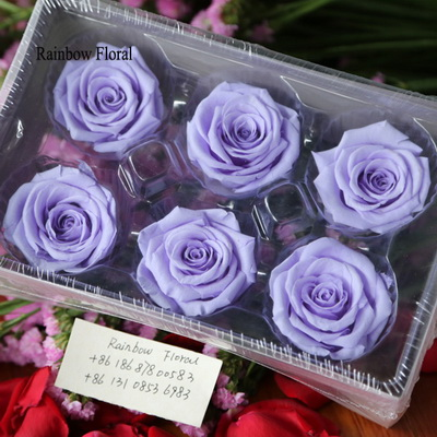 5-6CM (6pcs-box) Solid color preserved rose head-10