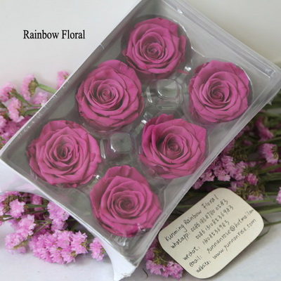 5-6CM (6pcs-box) Solid color preserved rose head-09