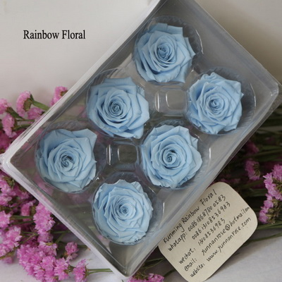 5-6CM (6pcs-box) Solid color preserved rose head-14
