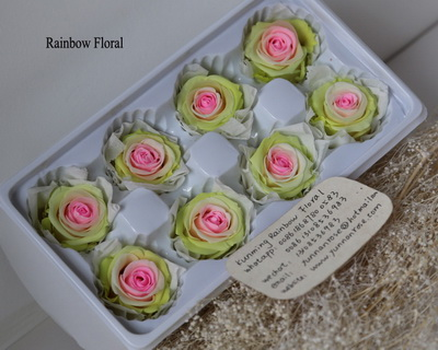 4-5CM (8pcs-box) Bi-color preserved rose head-09