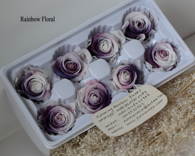 4-5CM (8pcs-box) Bi-color preserved rose head-06