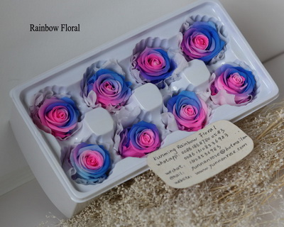 4-5CM (8pcs-box) Bi-color preserved rose head-05