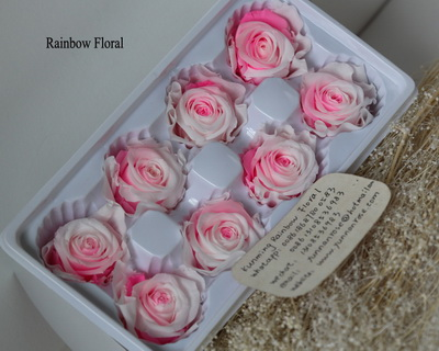 4-5CM (8pcs-box) Bi-color preserved rose head-08