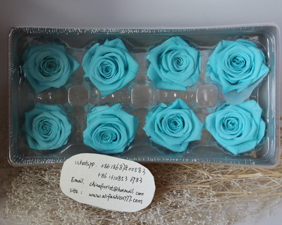 4-5CM (8pcs-box) Solid color preserved rose head-04